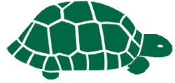 Turtle Workshop Home Study Course
