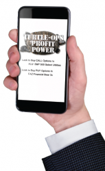 Turtle-Ops Profit Power Guide - Daily Forecast